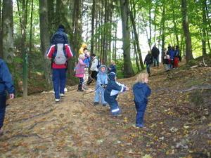 Skovtur ved Berdorf den 5. oktober 2003
