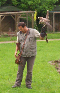 Fugleshow