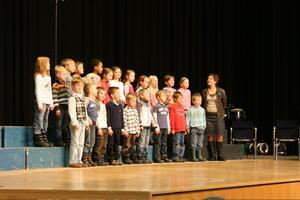 Lyskoncert 2009
